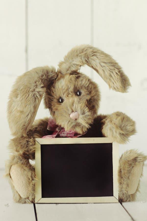 象家庭做的小兔的玩具熊在木白色Backgroun 免版税库存照片