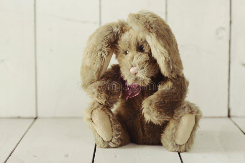 象家庭做的小兔的玩具熊在木白色Backgroun 库存图片
