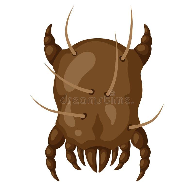 象尘土小蜘蛛昆虫 库存例证