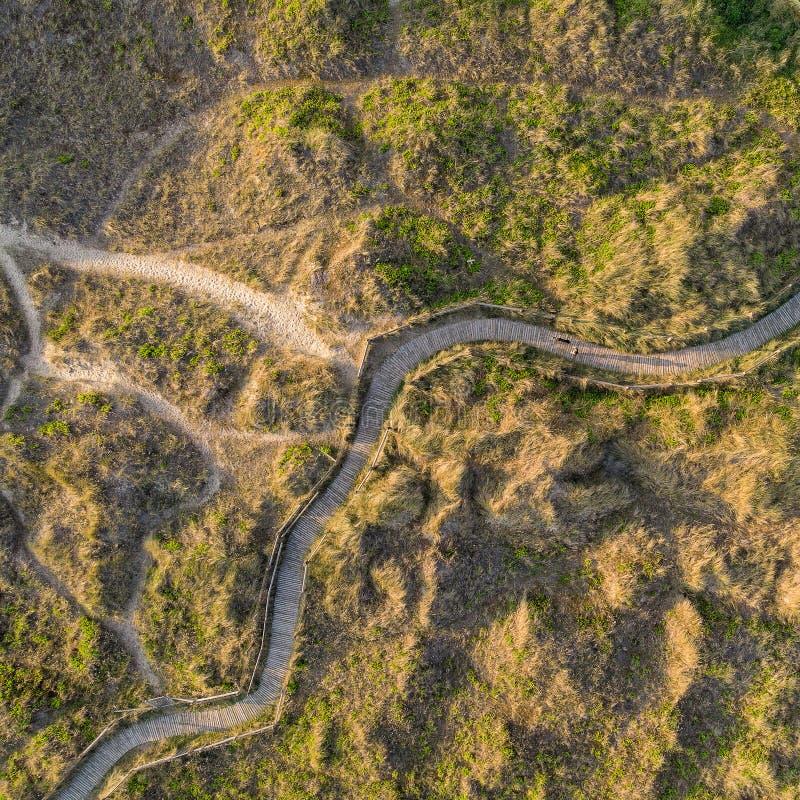 象草的沙丘寄生虫概略的鸟瞰图在海滩风景的在英国海岸的日出 库存图片