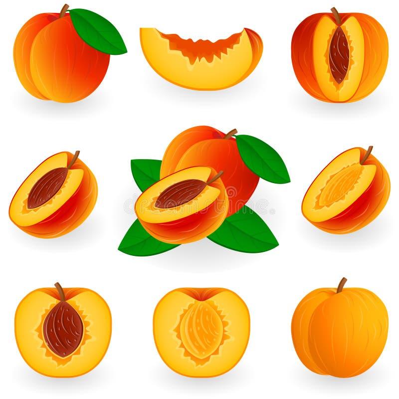 象集合桃子 向量例证