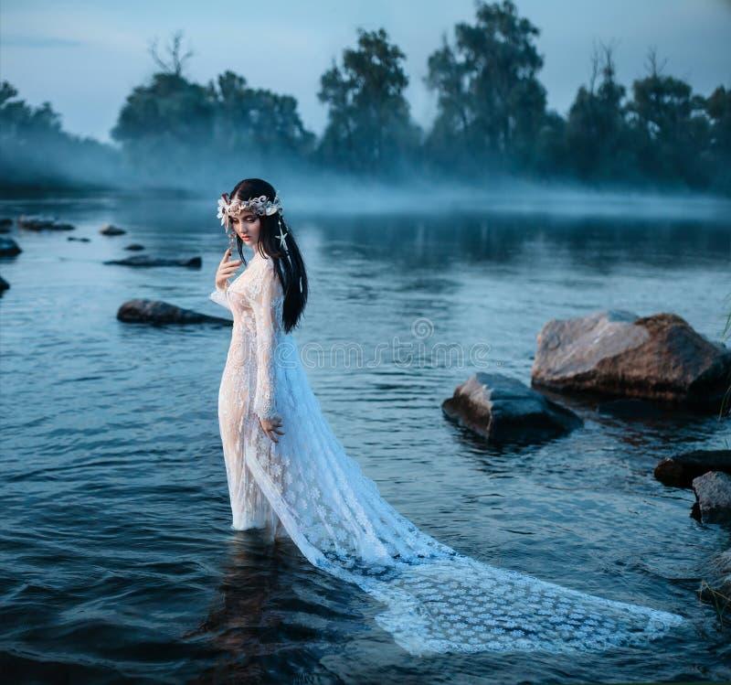 豪华夫人,典雅的长的礼服的在湖中部  免版税库存图片