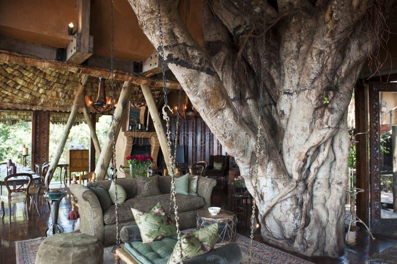 豪华徒步旅行队旅馆在非洲 免版税图库摄影