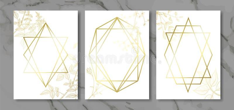 豪华拟订与手拉的植物和金子几何形状的汇集 传染媒介时髦背景 现代套抽象卡片, tem 向量例证