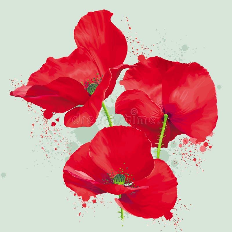 豪华明亮的红色传染媒介鸦片开花在水彩的图画 库存例证