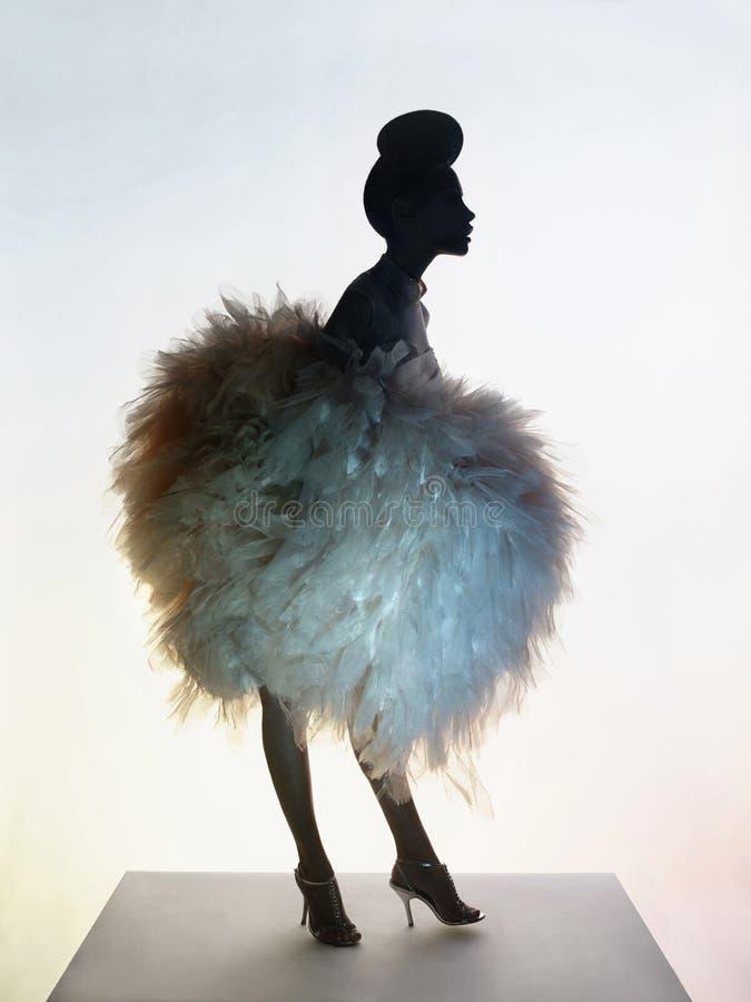豪华晚礼服的美丽的端庄的妇女 免版税图库摄影