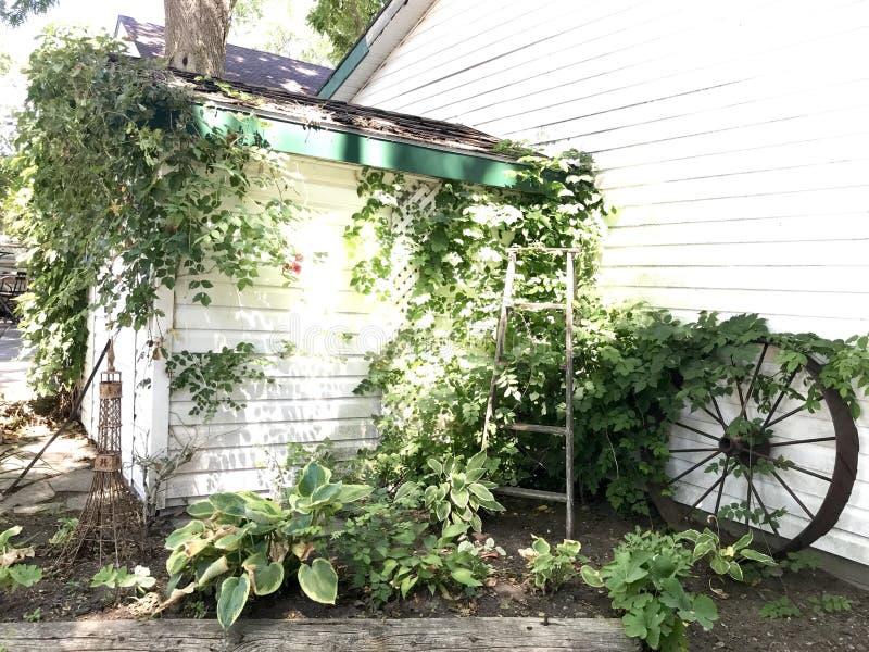 豪华的庭院 库存图片