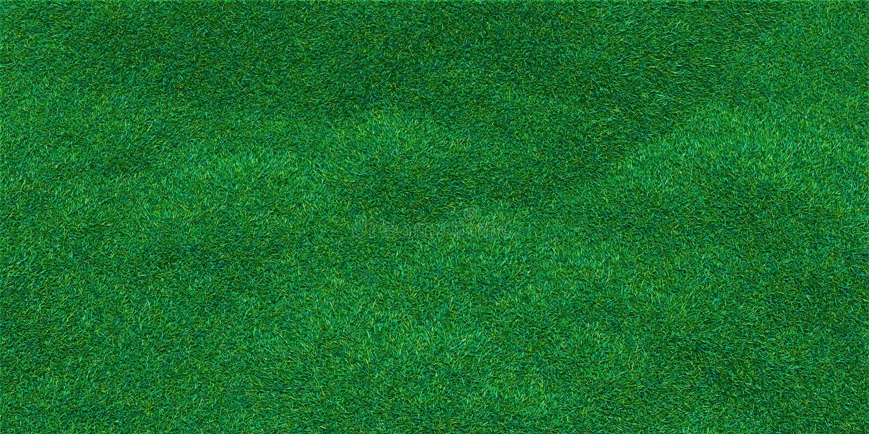 豪华的草地背景影像  向量例证