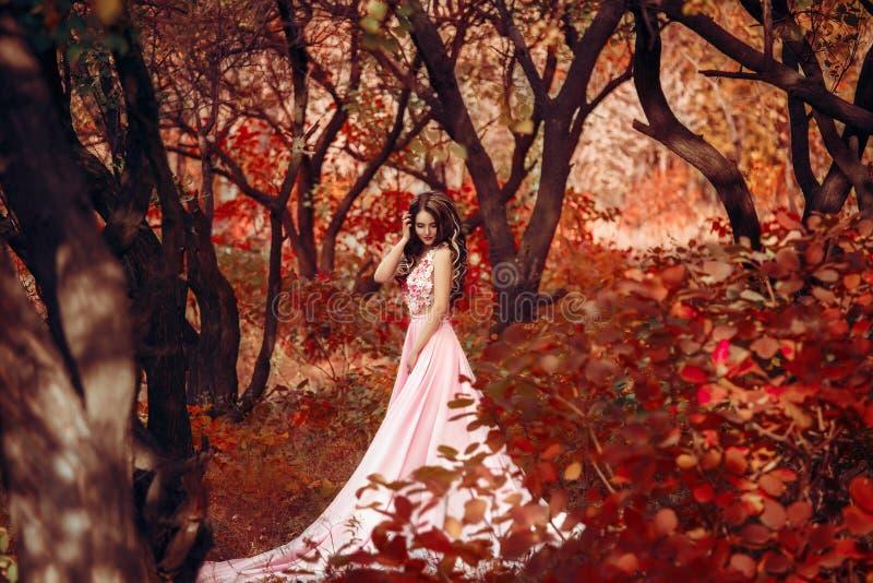 豪华豪华的桃红色淡色礼服的夫人 库存照片