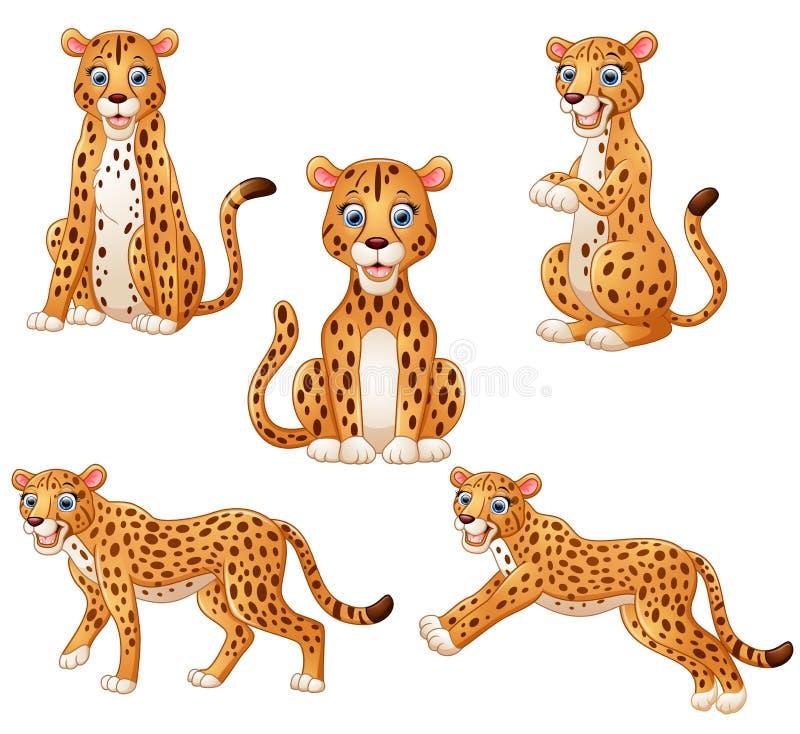 豹子动画片集合收藏 向量例证