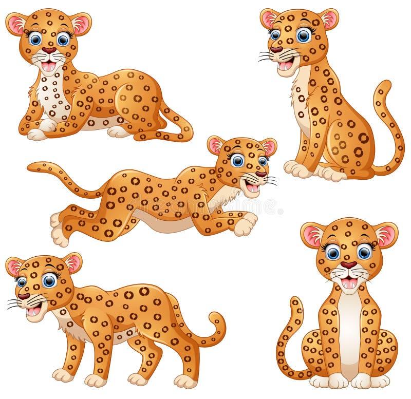 豹子动画片集合收藏 库存例证