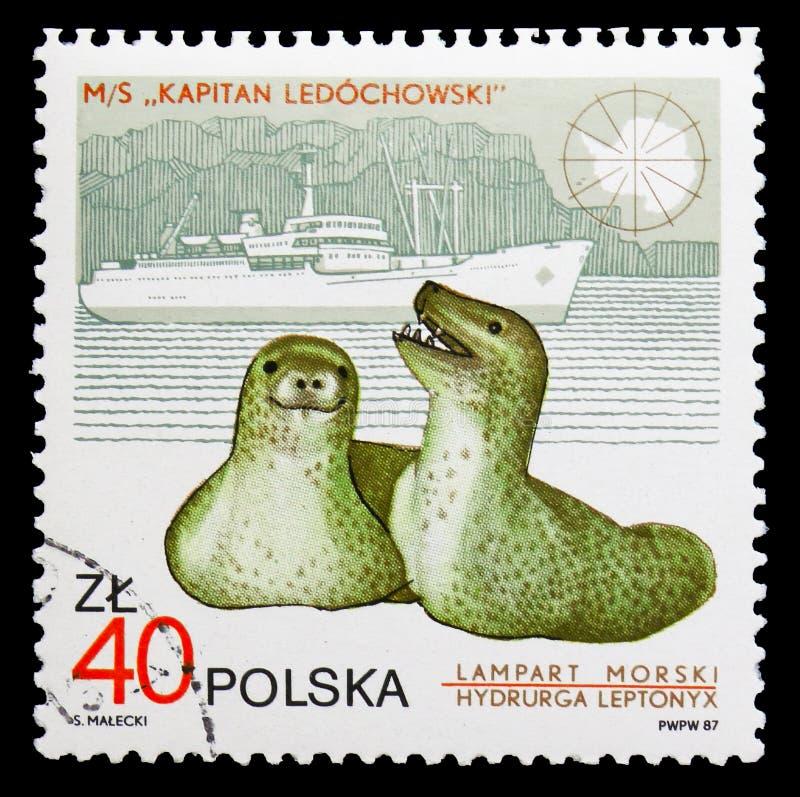 """豹子封印和""""Leduchowski上尉"""",亨利克Arctowski南极驻地serie第10周年,大约1987年 免版税库存照片"""