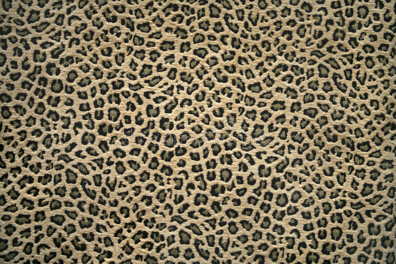 豹子模式皮肤 免版税库存照片