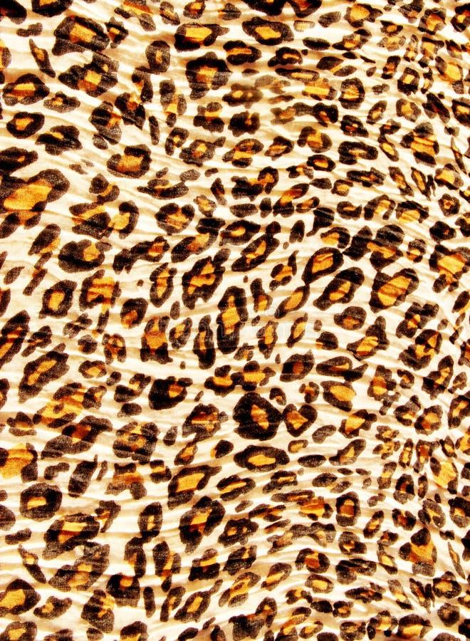 豹子模式 免版税库存图片