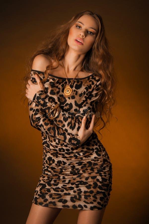 豹子礼服的美丽的少妇 免版税库存图片