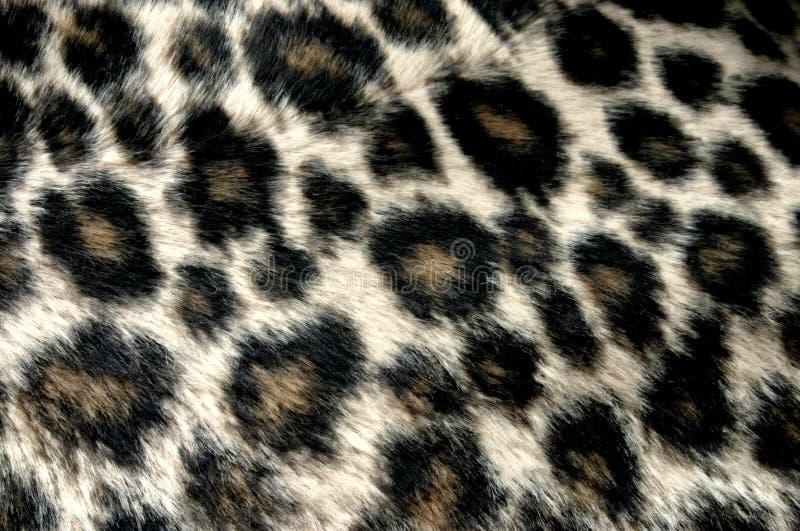 豹模式 免版税库存图片