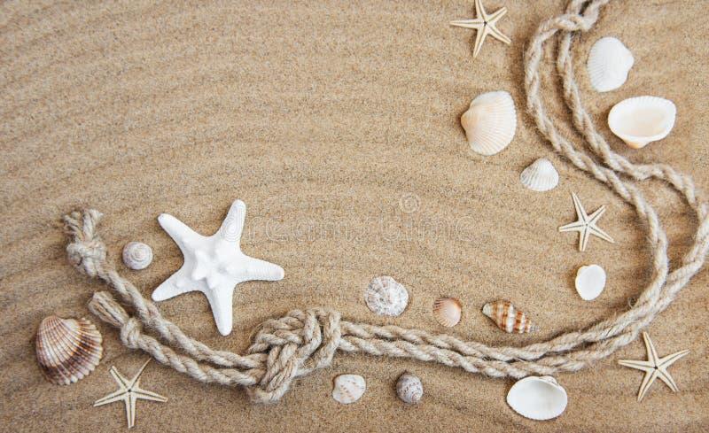 贝壳和海装饰与绳索 免版税图库摄影