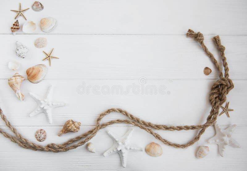 贝壳和海装饰与绳索 库存图片