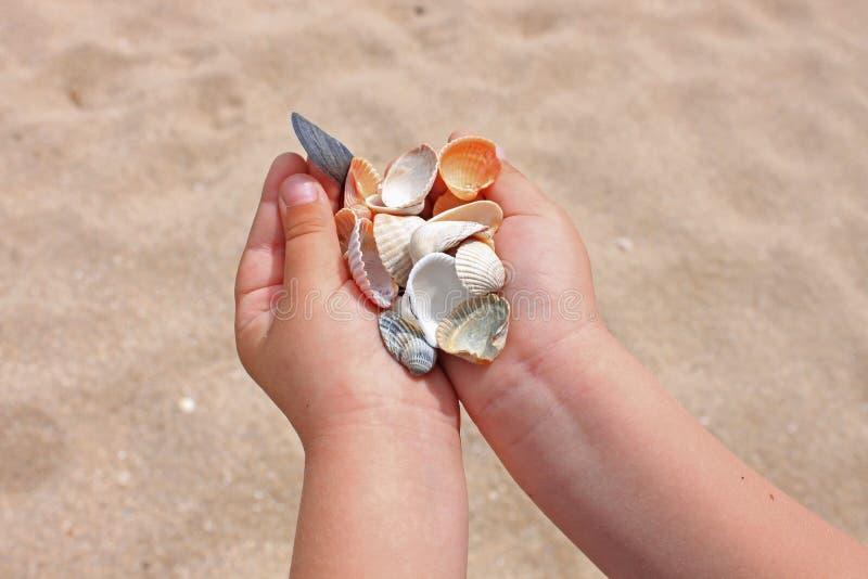 贝壳和石头对于儿童手在海和沙子,海洋海滨,特写镜头,拷贝空间的背景 库存照片