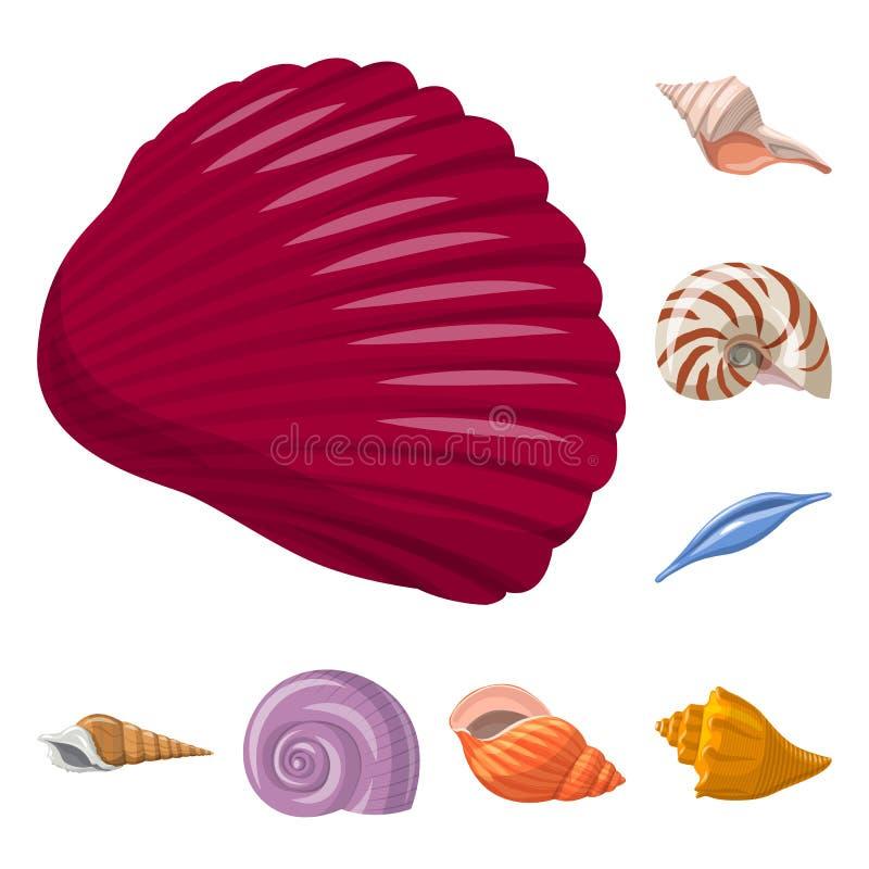 贝壳和软体动物象被隔绝的对象  设置网的贝壳和海鲜股票简名 皇族释放例证