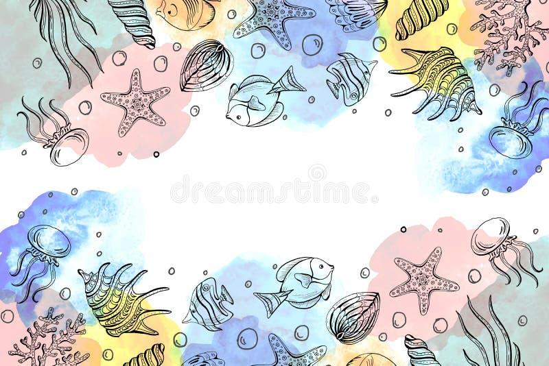 贝壳,海星,水母的构成 水下的世界海背景,与拷贝空间的背景 库存例证