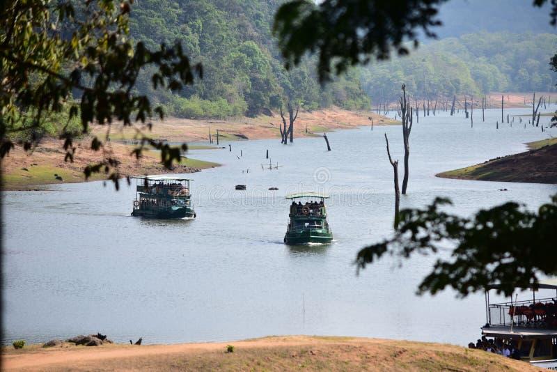 贝里亚尔河thekkady的野生生物保护区 免版税库存照片