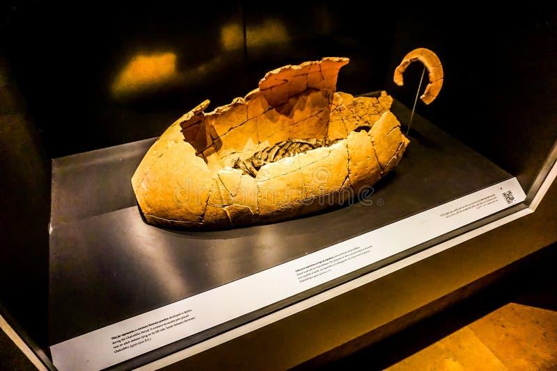 贝鲁特国家博物馆28 免版税库存照片