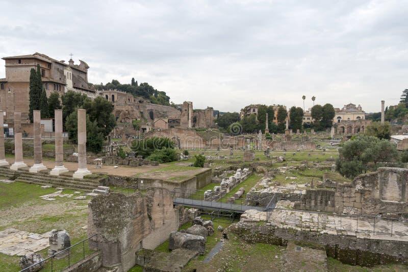 贞洁的议院的废墟在古罗马广场 意大利罗马 库存照片