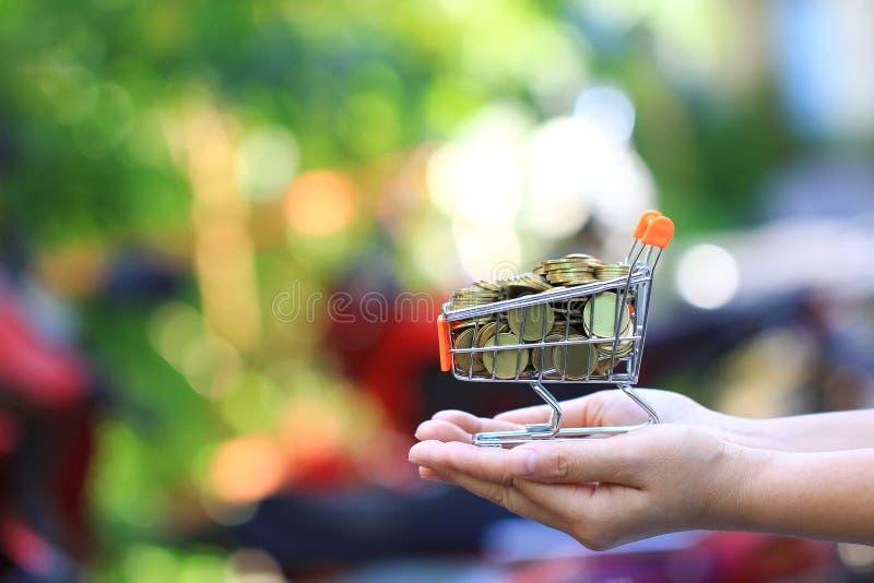 财务,妇女在微型手推车的金币金钱藏品堆在自然绿色背景,商业投资成长和 库存照片