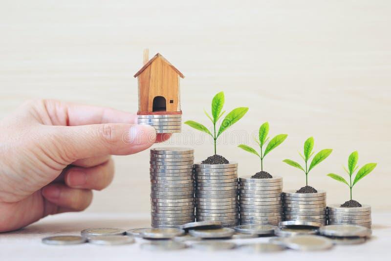 财务,妇女手拿着有植物的式样房子生长在堆在wooder背景的硬币金钱,利息和银行业务 库存照片