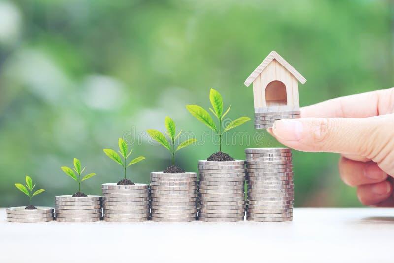 财务,拿着有植物的妇女手式样房子生长在堆在自然绿色背景,利息的硬币金钱和 库存照片