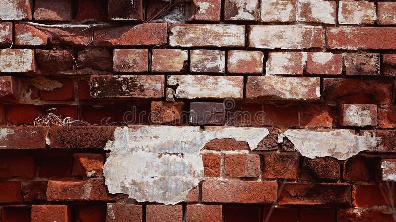 质地老粉碎的砖墙 库存图片