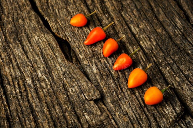 质朴的木质背景中带文字复制空间的辣椒 免版税库存图片