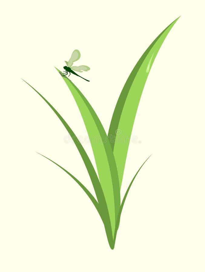 质朴的蜻蜓 向量例证