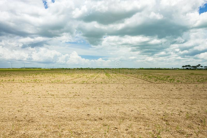贫瘠农业领域 免版税图库摄影