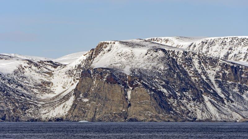 贫瘠峭壁在高北极 免版税库存图片