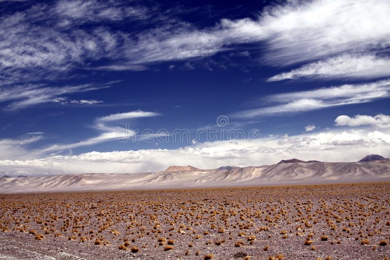 贫瘠干燥不尽的平原加点与干草,在天际的白色闪烁山脉一束  免版税库存照片