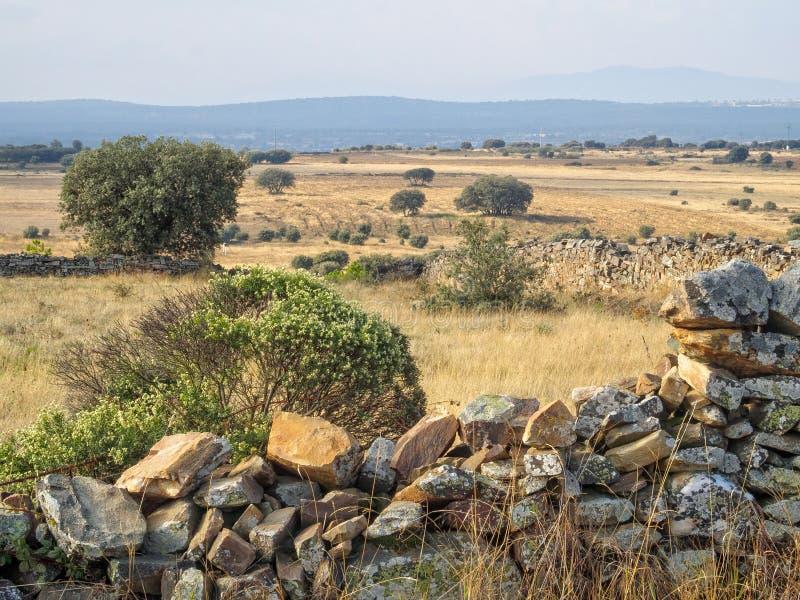 贫瘠干陆-圣卡塔利娜de索摩查 库存照片
