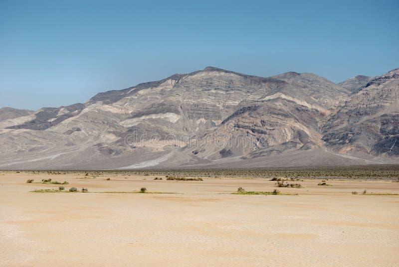 贫瘠沙漠 库存照片