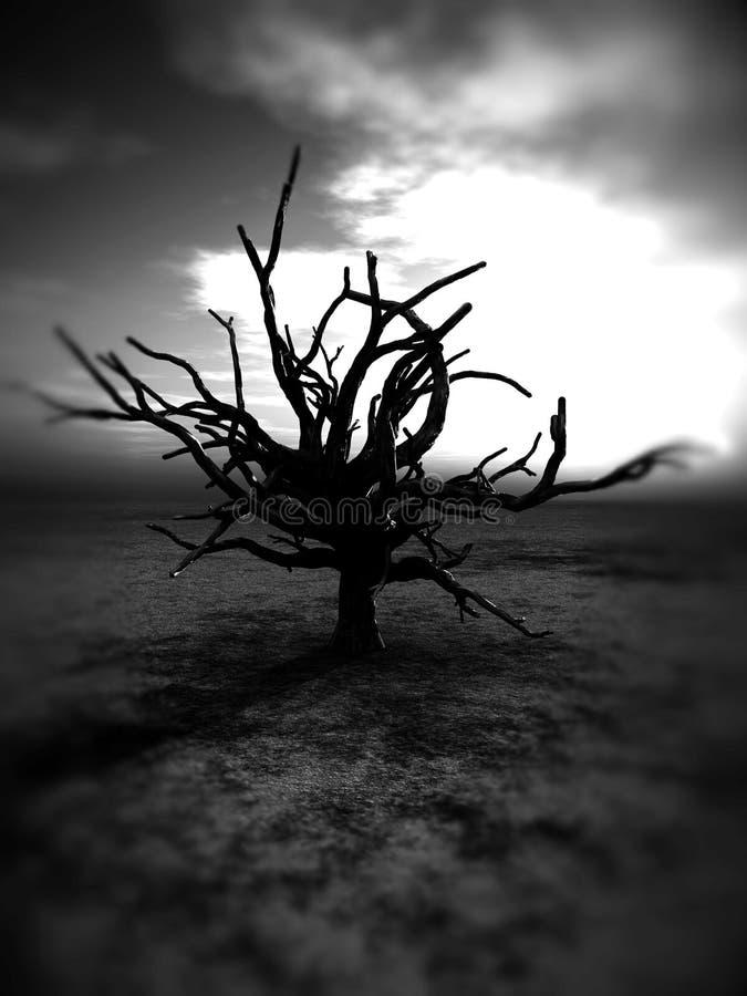贫瘠结构树235 免版税库存图片
