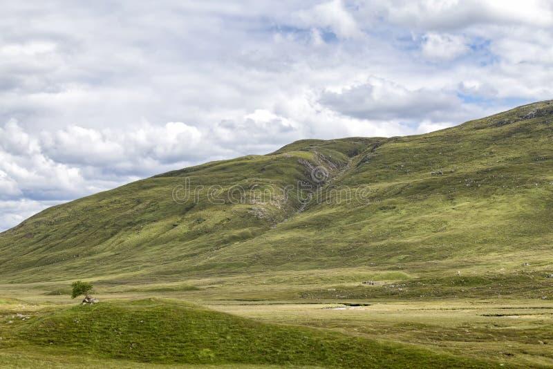 贫瘠苏格兰风景 免版税图库摄影