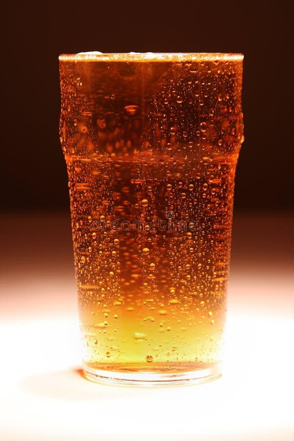 贮藏啤酒品脱 免版税库存照片