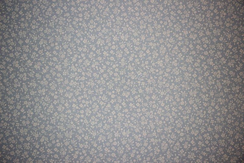 贴墙纸在一件小白花装饰品的背景在灰色蓝色背景 免版税库存照片