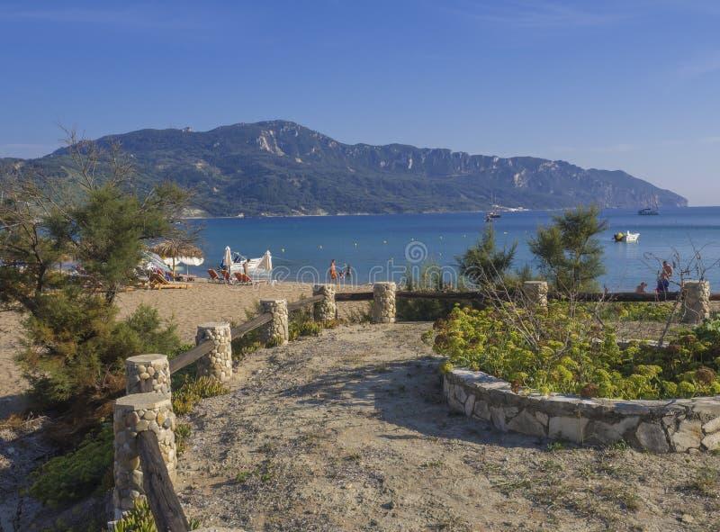 贴水乔治斯Pagon沙子海滩onCorfu海岛,希腊从散步观看了用花盆,用太阳床,游泳的人民和 免版税库存照片