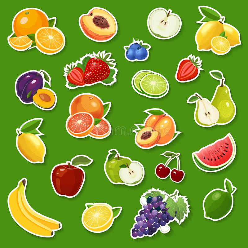 贴纸用新鲜的自然果子和莓果 果子和莓果导航例证 皇族释放例证