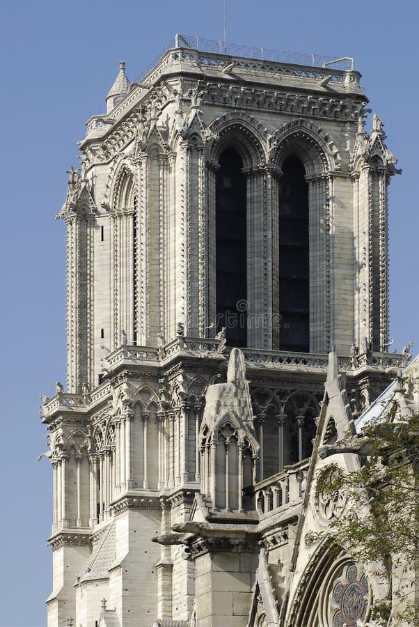贵妇人notre巴黎南塔 免版税图库摄影