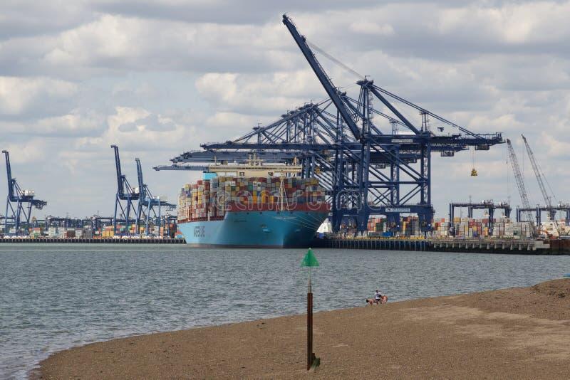 费利克斯托,英国- 2015年7月11日:马士基线containe 免版税图库摄影