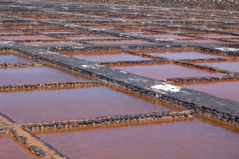 费埃特文图拉岛盐厂 免版税库存图片
