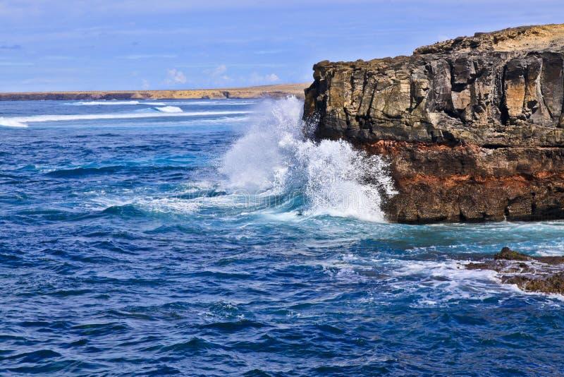 费埃特文图拉岛Puerto de la Cruz Cliff 免版税库存照片