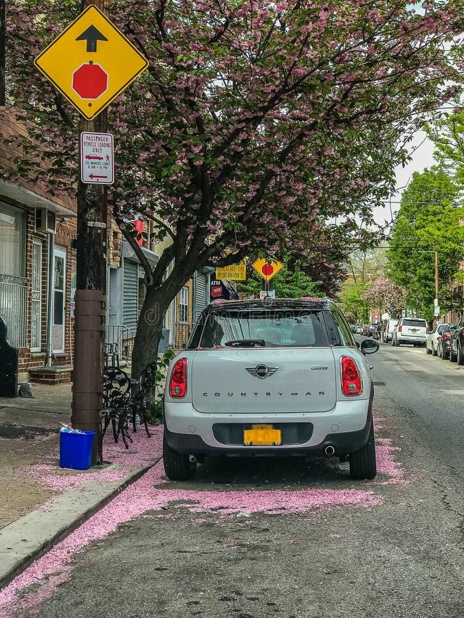 费城,宾夕法尼亚美国- 4月23日佐仓的2017个瓣盖街道和汽车 免版税库存照片